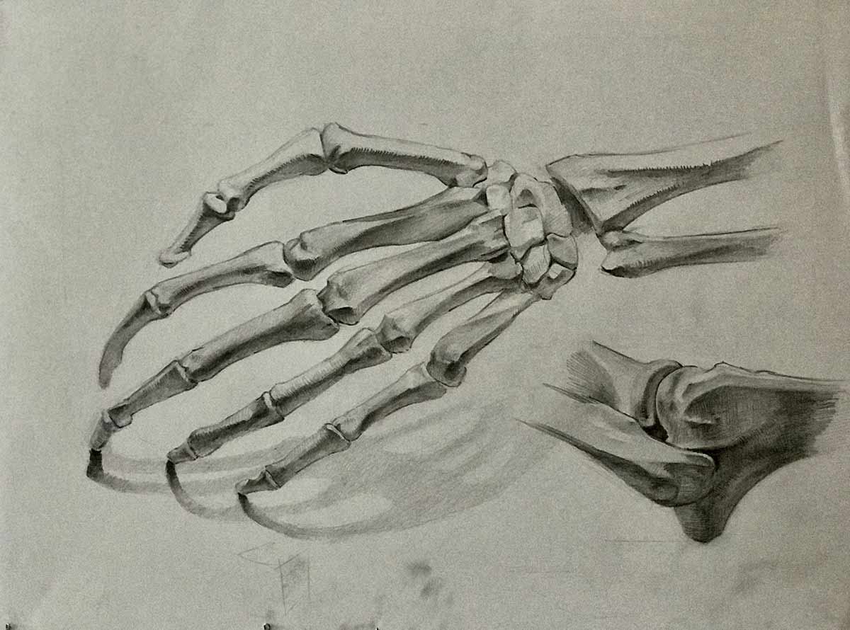 местных картинка скелет кисти руки пронзительный